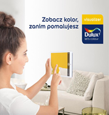 Dulux visualiser